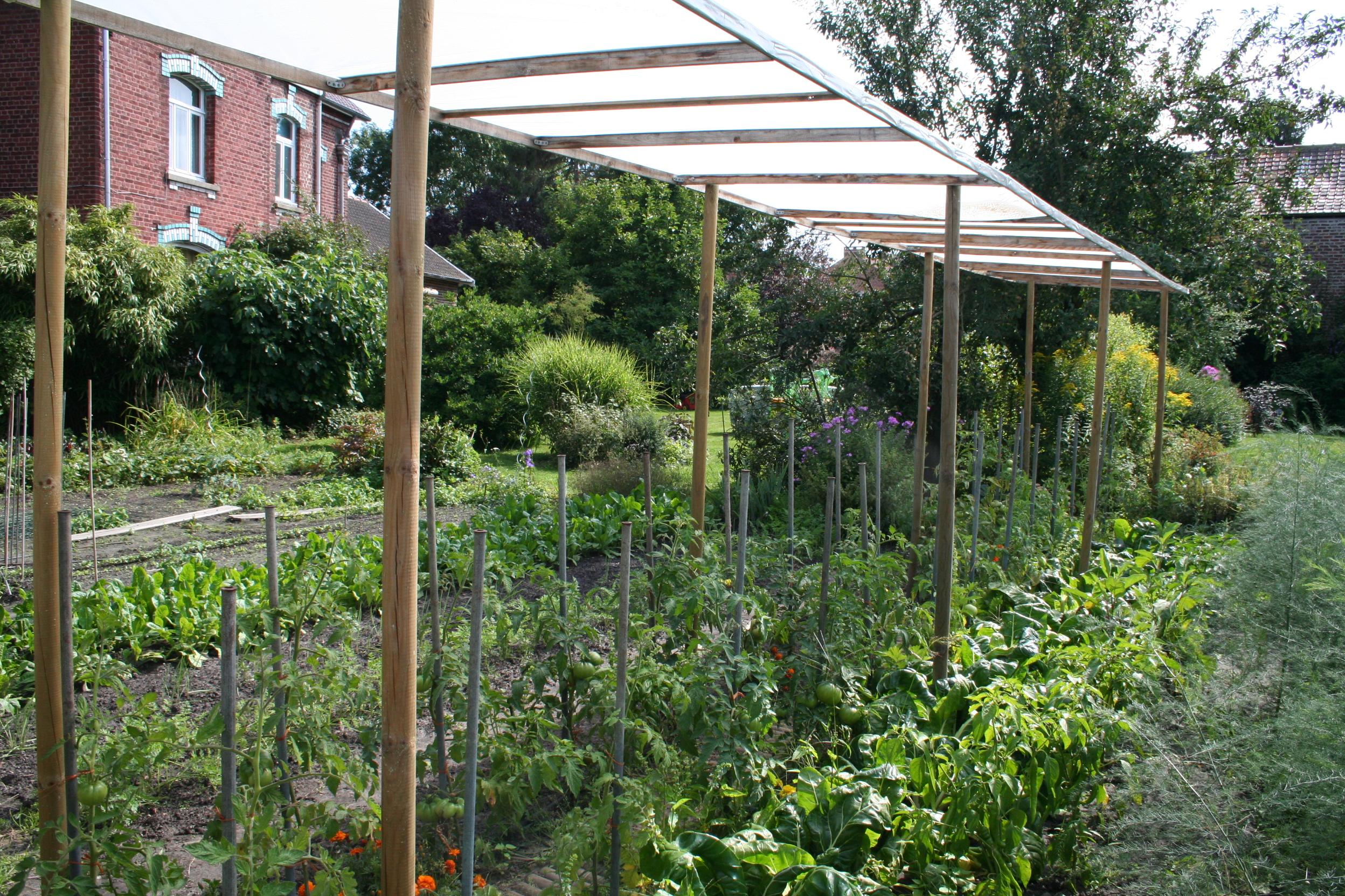C line au jardin journaliste pour les jardiniers nord de france page 3 - Comment faire grossir les tomates ...