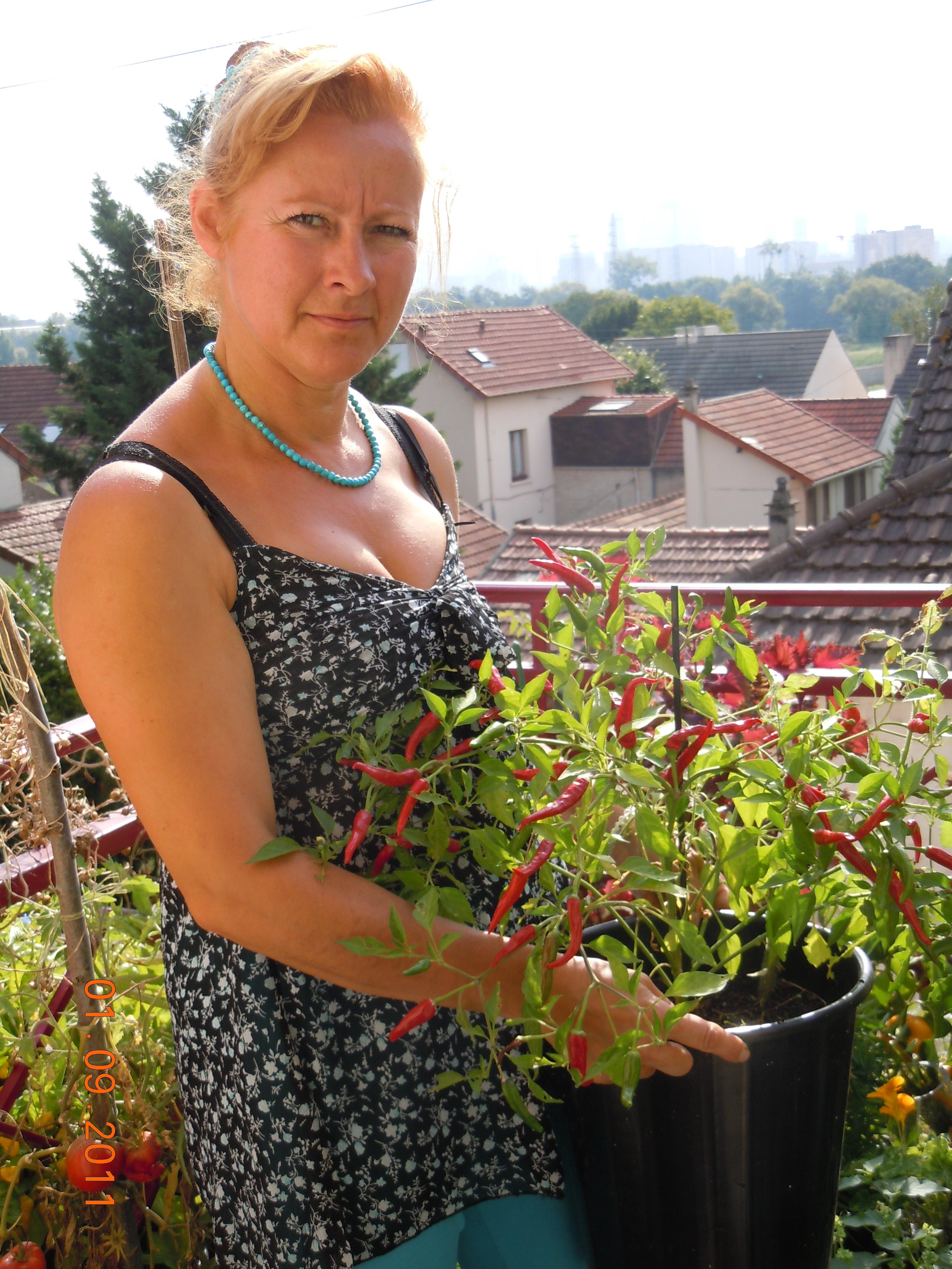 C line au jardin journaliste pour les jardiniers nord - Graine de piment oiseau ...