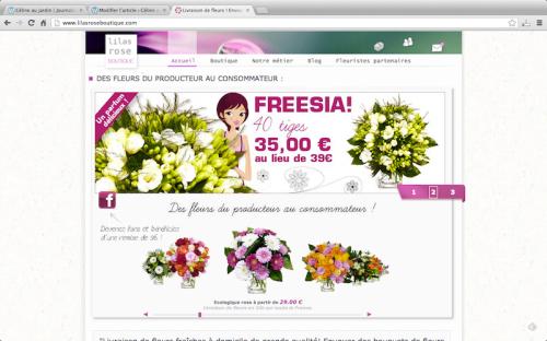 lilasroseboutique.com