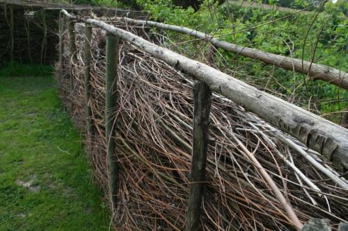Entre les deux rangs on laisse 40cm environ pour y glisser les branches. Crédit C. Delhaye